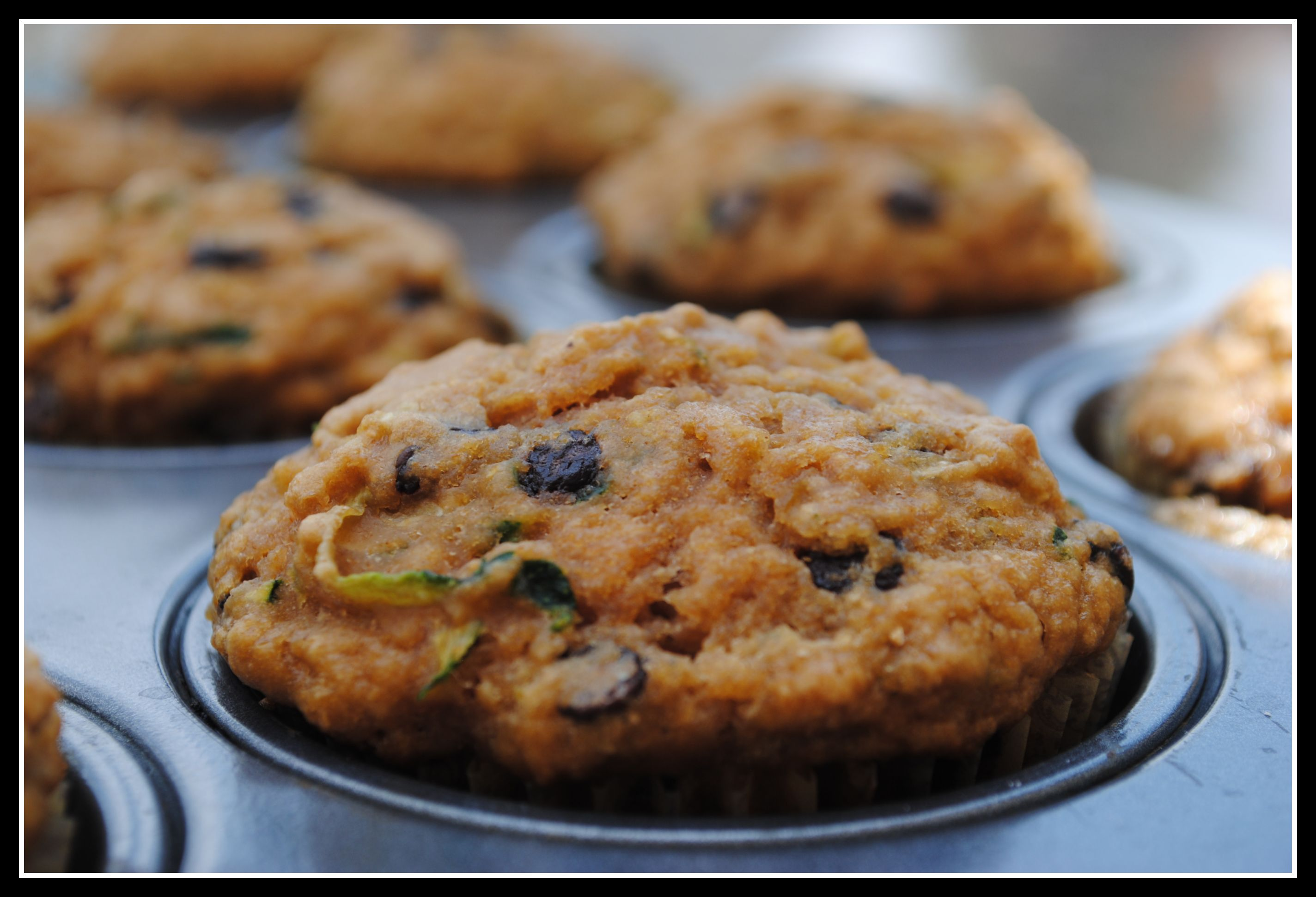 Low Fat Chocolate Chip Zucchini Muffins very slightly adapted from ...