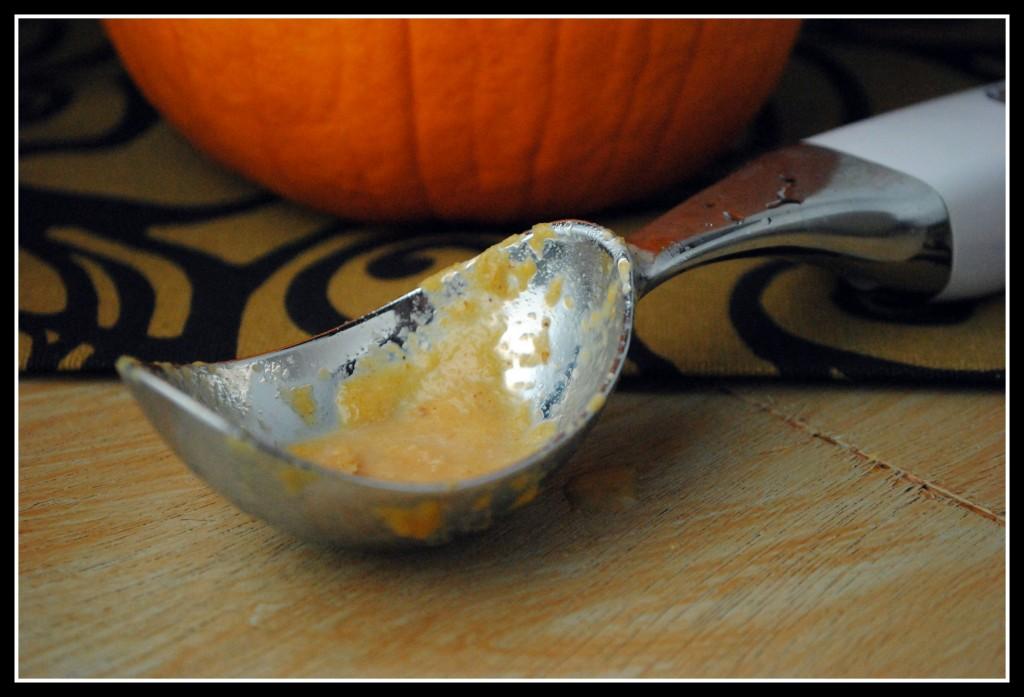 Pumpkin Sherbet
