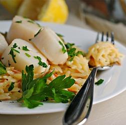 Parmesan Lemon Orzo
