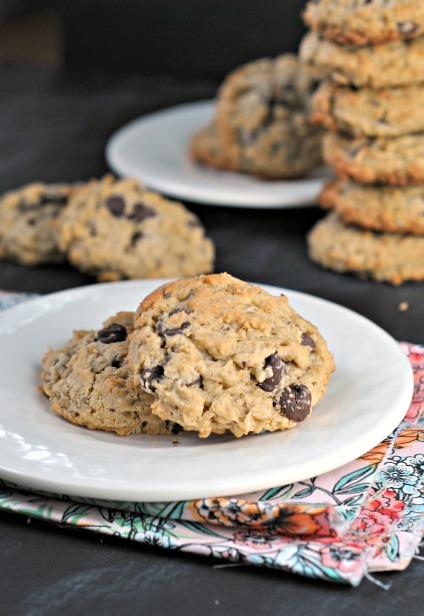 Lactation Cookies 1
