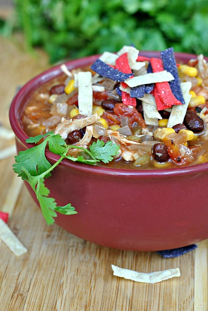 Slow Cooker Chicken Enchilada Soup 1