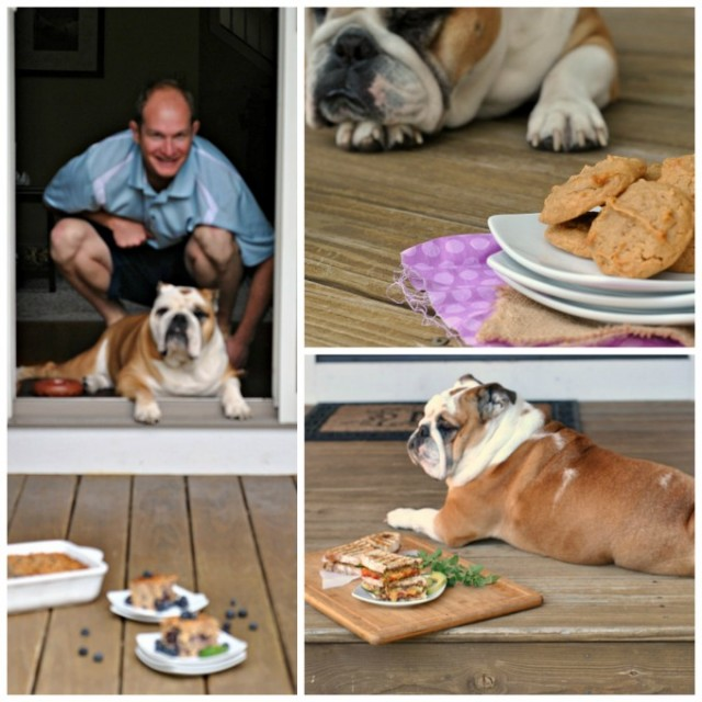 food blogging with a dog collage 1