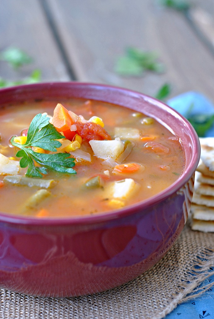 Classic Vegetable Soup 1