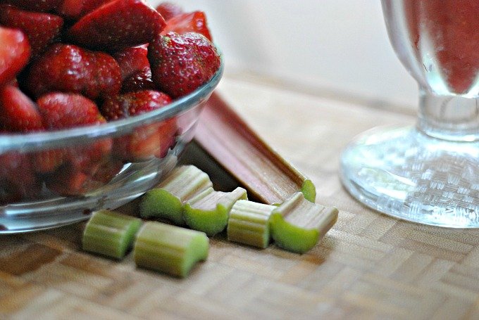 Strawberry-Rhubarb Sorbet 2
