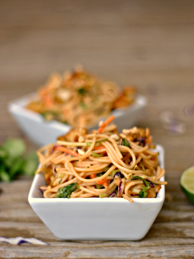 Satay Chicken Noodle Salad 4