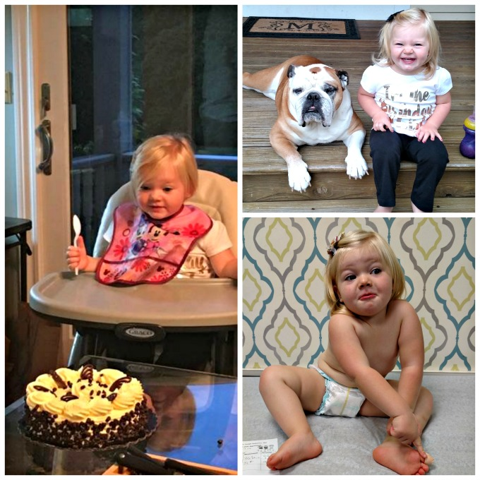 shea-2nd-birthday-collage